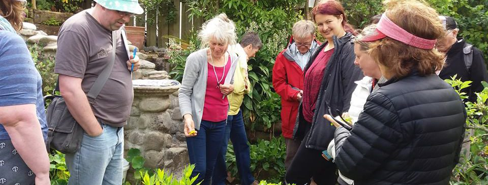 Hutt Timebank Edible Weeds Workshop
