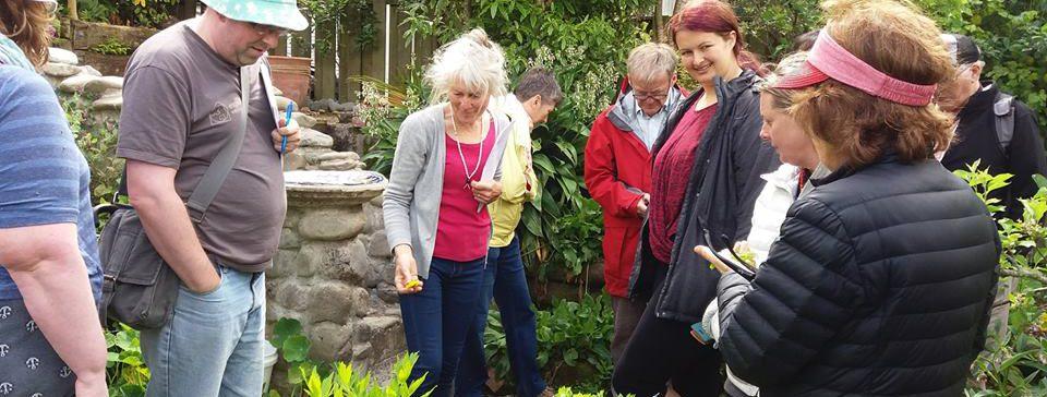 Hutt Timebank Edible Weeds Workshop